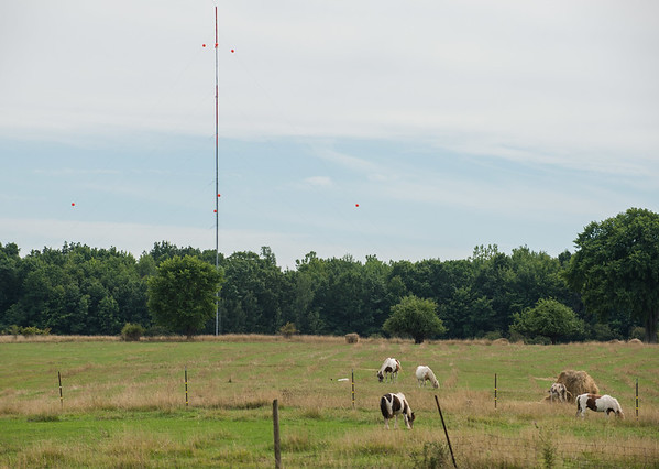 JOED VIERA/STAFF PHOTOGRAPHER-Somerset, NY- Ponies graze on a field in front of a met tower on Lower Lake Road.