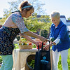 JOED VIERA/STAFF PHOTOGRAPHER-Lockport, NY-Kathy O'Keefe and Carol Caisse pack up a bag full of tomatoes and pepper at the garden outside of Windsor Village.