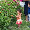JOED VIERA/STAFF PHOTOGRAPHER-Lockport, NY-  Children pick flowers at McCollum orchards.