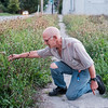 JOED VIERA/STAFF PHOTOGRAPHER-Lockport, NY-  Wayne Budde shows how tall the grass he cut was.