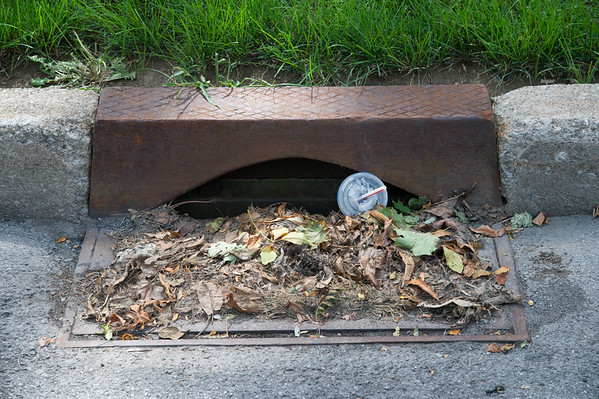 JOED VIERA/STAFF PHOTOGRAPHER-Lockport, NY-  Willow Street gutters are cluttered with leaves and litter.