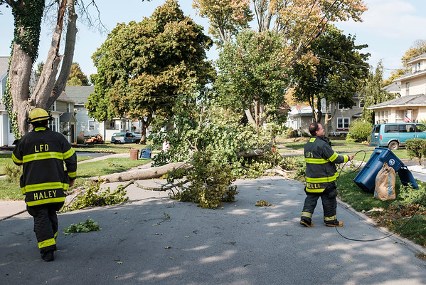 JOED VIERA/STAFF PHOTOGRAPHER-Lockport, NY-A fallen tree limb on Beverley Place nearly struck a vehicle and block traffic.