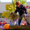 JOED VIERA/STAFF PHOTOGRAPHER-Lockport, NY- Terry Hayner plucks petunias from Ida Fritz Park.