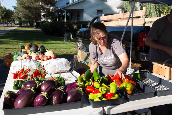 JOED VIERA/STAFF PHOTOGRAPHER-Newfane, NY-Jo Marie Human sets up her booth at the Newfane Farmers Market.