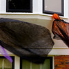 JOED VIERA/STAFF PHOTOGRAPHER-Lockport, NY-Decorations  sway in the winds outside of a house on Beverly Place.