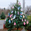 JOED VIERA/STAFF PHOTOGRAPHER-Gasport, NY-Roy-Hart students filled the Christmas tree in front of the Gasport Post Office with gift requests written on mittens.