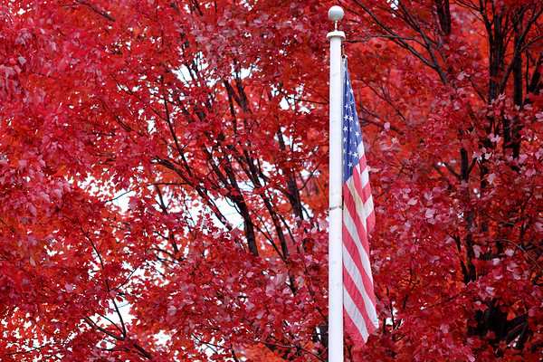 JOED VIERA/STAFF PHOTOGRAPHER-Lockport , NY-Old glory hangs in front of a  sea of red leaves by the Canal at Packett Park.
