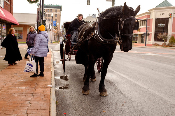 JOED VIERA/STAFF PHOTOGRAPHER-Lockport, NY-    A horse carraige ride stops outside of the Palace Theatre to pick up patrons.