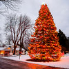 Joed Viera/Staff Photographer Lockport, NY- David Weitzsacker's evergreen tree towers over his Tonawanda Creek Road home. The tree has gotten so tall in recent years that Weitzsacker has had to hire a bucket truck to help decorate it.