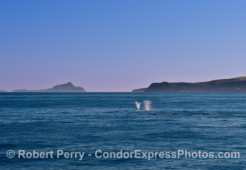 Two spouts with Anacapa Island (left) and Santa Cruz Island (right).