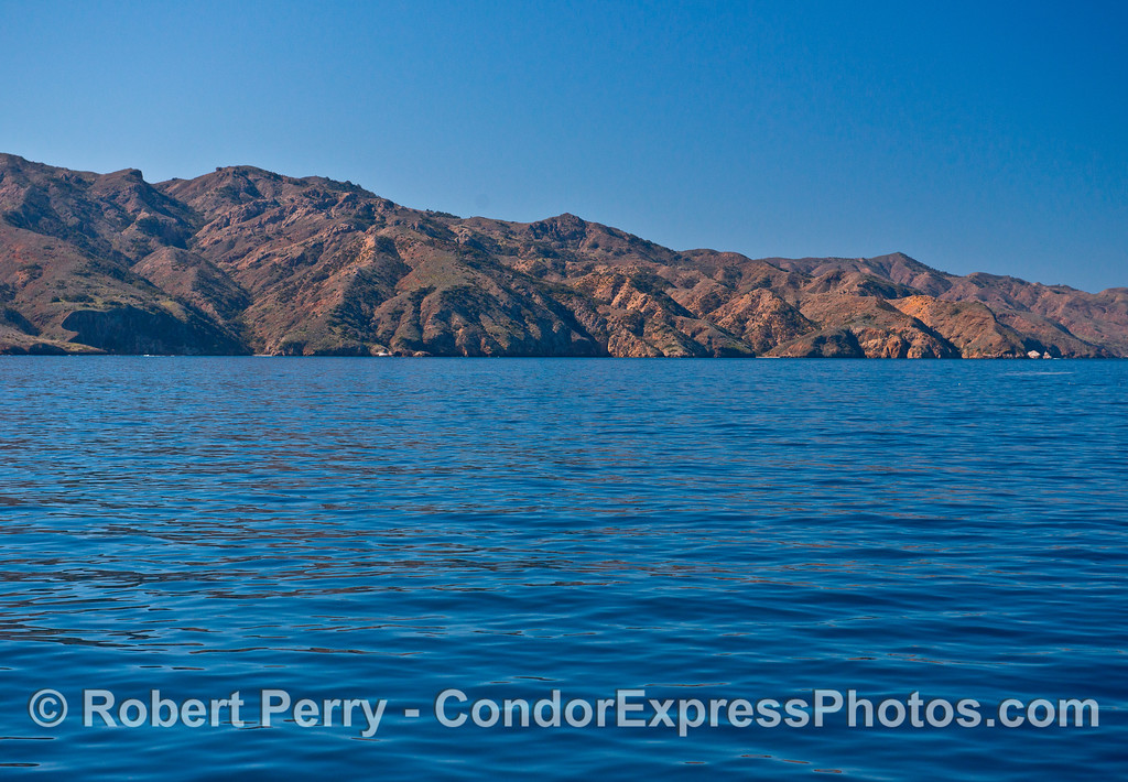 A glassy and sunny day along the north face of Santa Cruz Island.