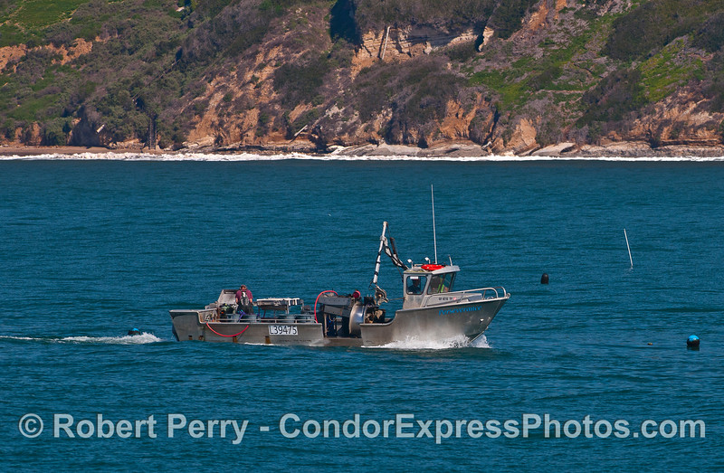 """Workboat """"Perservenrance' harvests cultured mussels and oysters along Hope Ranch."""