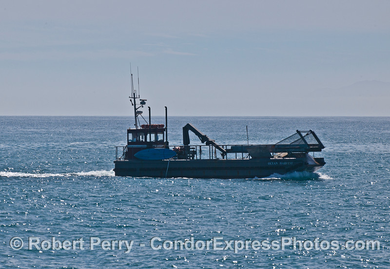 """Kelp cutter """"Ocean Harvest"""" mows the kelp bed to feed Abalone at the Cayucos farm."""