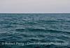Rough seas.