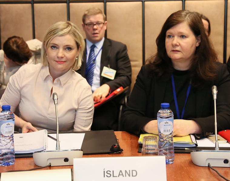 From left:  Ms Lilja Dögg Alfreðsdóttir, Minister for Foreign Affairs of Iceland and Ambassador Bergdis Ellertsdottir