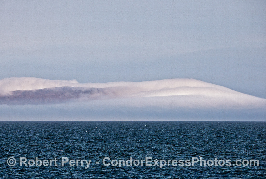 Fog shrouds the West End of Santa Cruz Island.