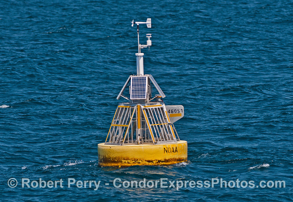 "Google ""Buoy 46053"" to see updated weather and sea conditions 24/7/365."
