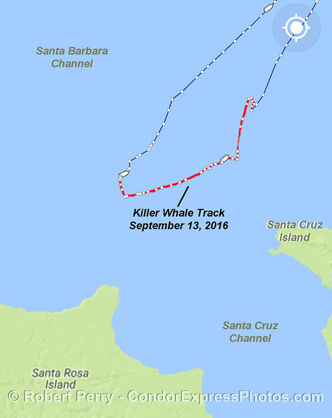 The red line highlights the portion of our trip during which we followed the killer whales.  Map captured from marinetraffic.com       Actual GPS locations for each photograph will appears on a separate map at the bottom of the page.