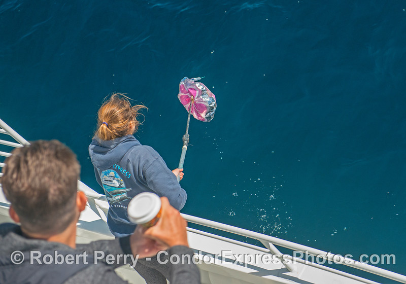 Deckhand Tasha retrieves evil mylar balloon.