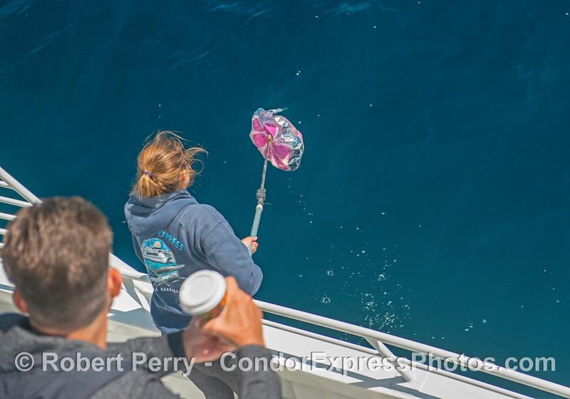 Deckhand Tasha retrieves evil mylar balloon.