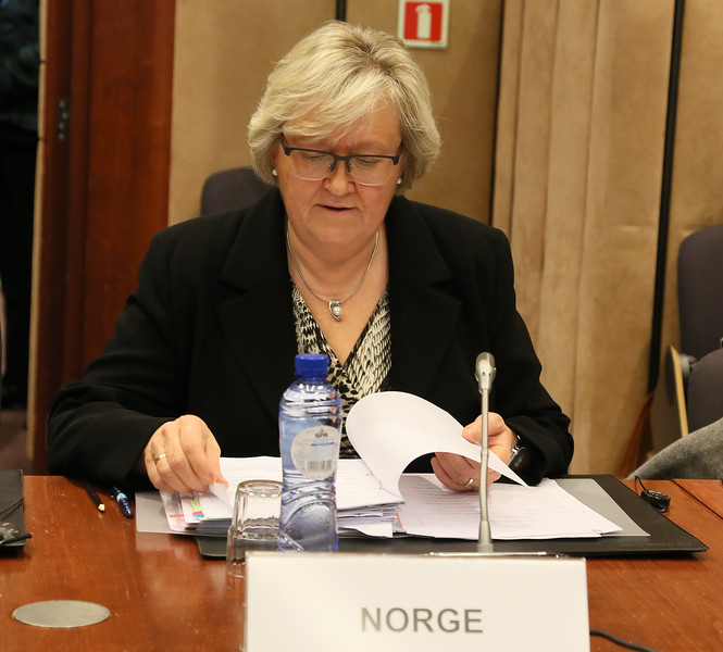 Ms Elisabeth Aspaker (Chair), Minister of EEA and EU Affairs, Norway