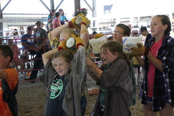 2016 Benton County Fair - Barnyard Olympics