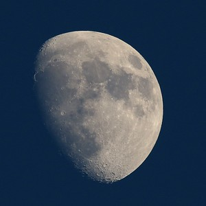 Moon, Waxing Gibbous