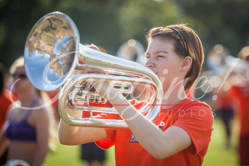 clemson-tiger-band-vt-2016-108