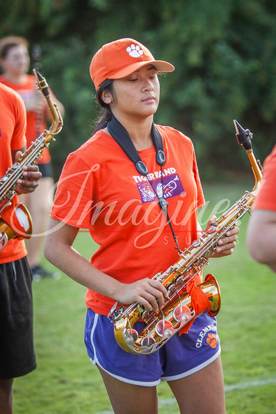 clemson-tiger-band-vt-2016-221