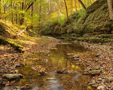 DA054,DP,Meandering Creek