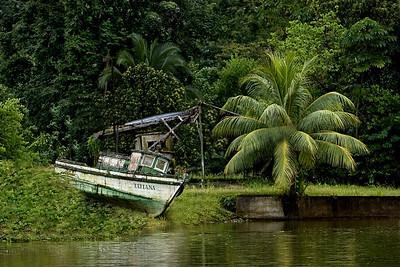DA058,DT,Beached Costa Rico