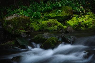 DA099,DP,Maroon Creek, CO