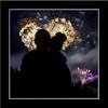 silhouette  Fireworks at Assiniboine Park