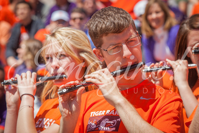 clemson-tiger-band-spring-game-2016-65