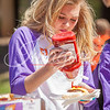 clemson-tiger-band-spring-game-2016-2