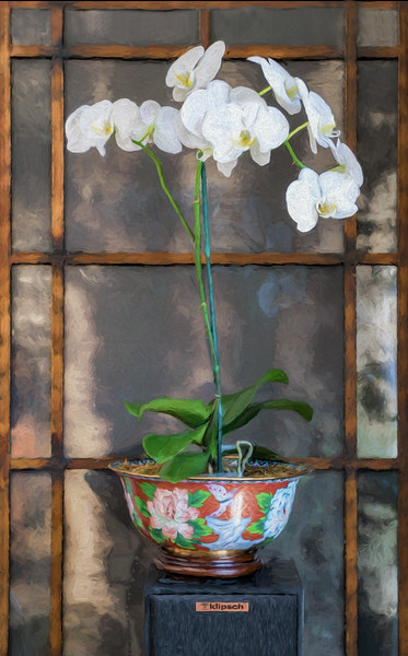 4-2-16 Orchid & MIrror