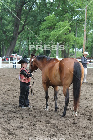 4-H Horse and Pony