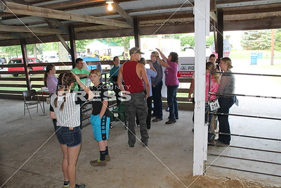 4-H Ultimate Showman