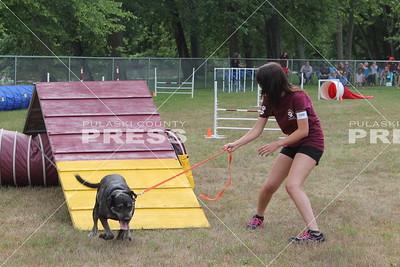 4-H dog agility