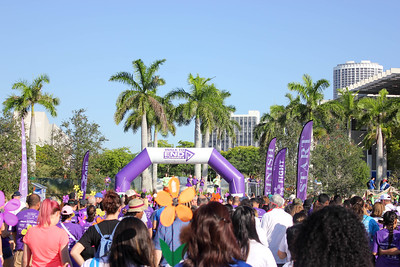 Miami Walk 2016 Dominick Borgia's Photos