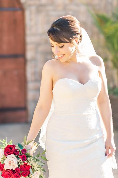 3-james-greta-potomac-point-winery-virginia-wedding-photographer-7