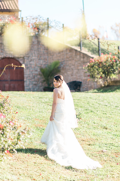 3-james-greta-potomac-point-winery-virginia-wedding-photographer-9