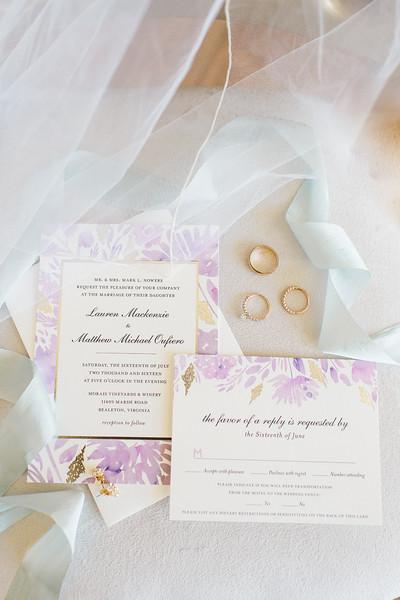 1-matt-lauren-morias-vineyards-bealeton-virginia-wedding-photographer-8
