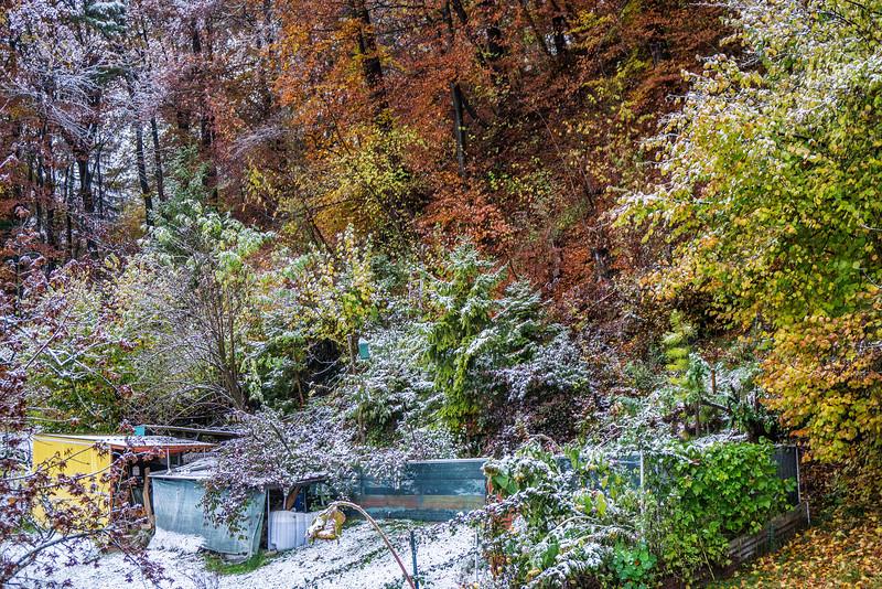 Der erste Schnee, 7.11.2016