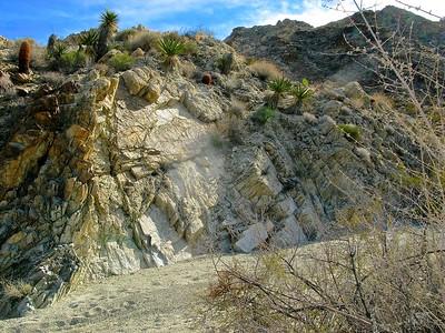 Rock layers & yucca