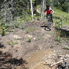 A mountain biker makes their way down the trail Drippy Snout, at Tabor Mountain on Saturday for the opening day of the bike park. Citizen Photo by James Doyle      July 16, 2016