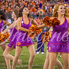clemson-tiger-band-natty-2016-820