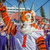 clemson-tiger-band-natty-2016-285