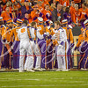 clemson-tiger-band-natty-2016-728