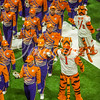 clemson-tiger-band-natty-2016-381